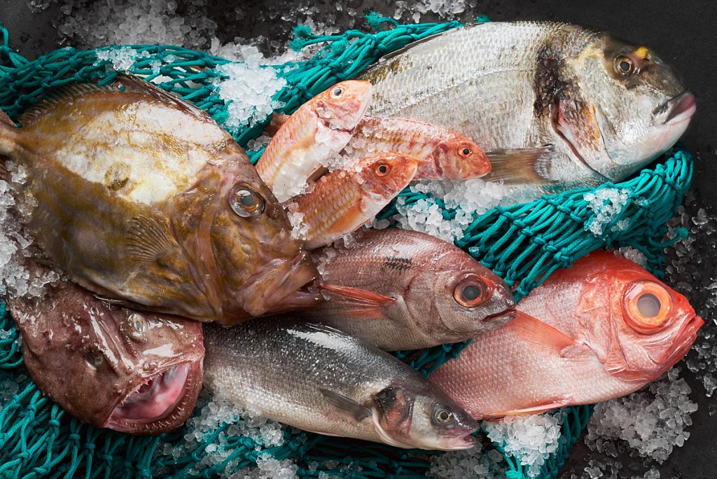 Bodegón de producto pescados del Cantábrico para publicidad